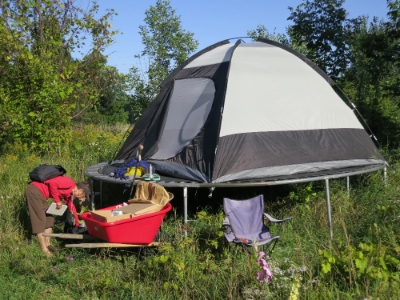 tent trampoline polyculture
